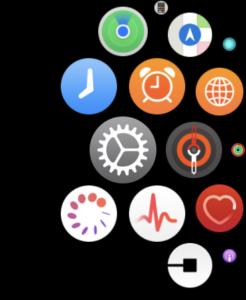 Clear Website Data on Apple Watch 1